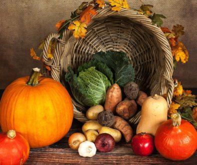 pumpkin-gdb44dfeae_1280